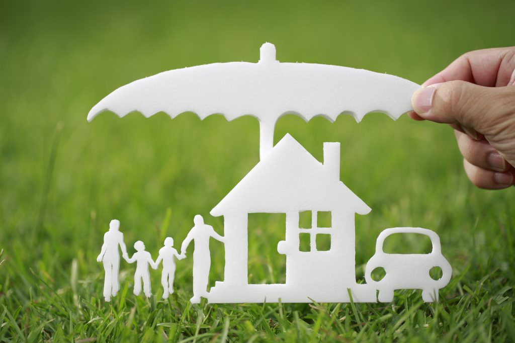 Protection of the family property in the green grass